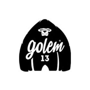 Logo Golem13